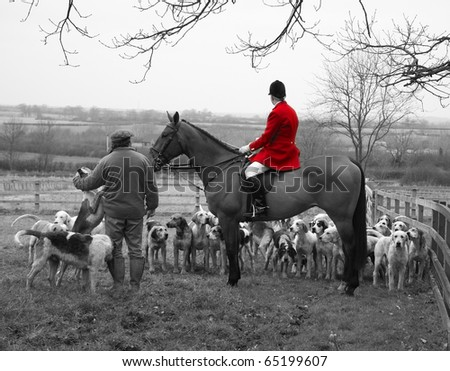 England Hunt Scene with Horse and Hounds - stock photo