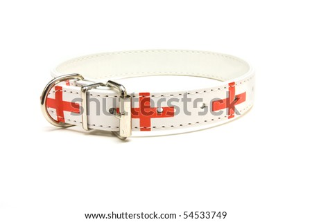 England supporter Dog Collar from low viewpoint isolated against white background. - stock photo