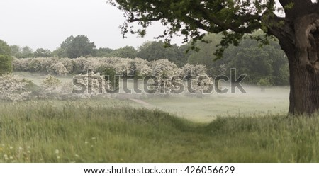 English countryside - stock photo