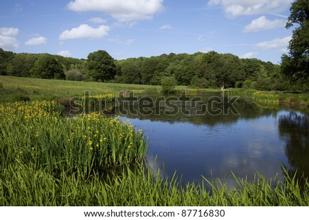 English countryside landscape in summer, with a pond surrounded by green fields with trees in the background and a blue sky - stock photo