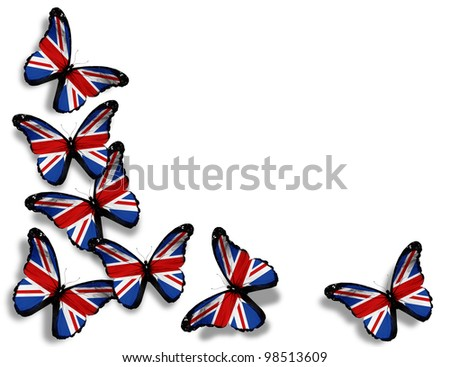 English flag butterflies, isolated on white background - stock photo
