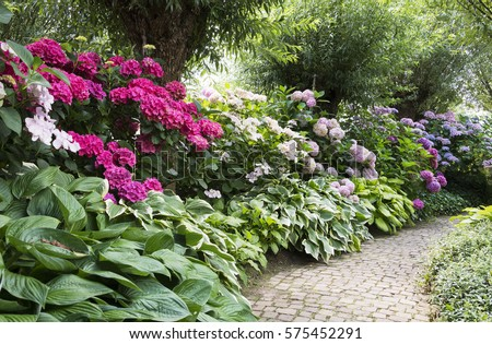 Delightful English Garden Full Of Flowering Plants As Azalea And Rhododendrons