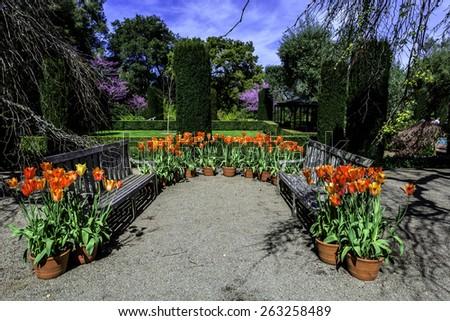 english garden style park bench  - stock photo