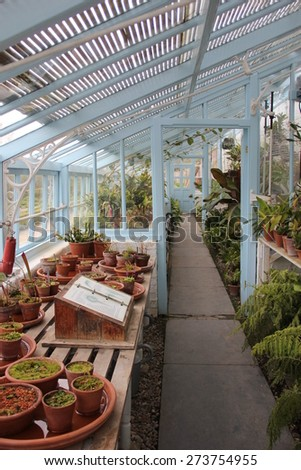 English greenhouse