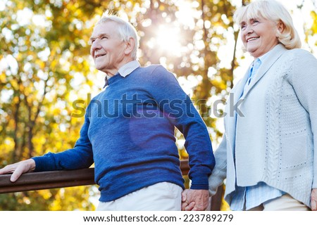 Enjoying beautiful day together. Happy senior couple holding hands and moving down by wooden staircase - stock photo