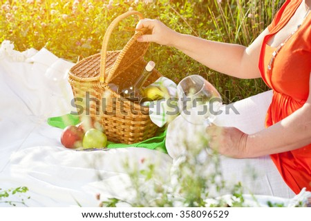 Enjoying lunch with red wine and fruits, picnic outdoors - stock photo