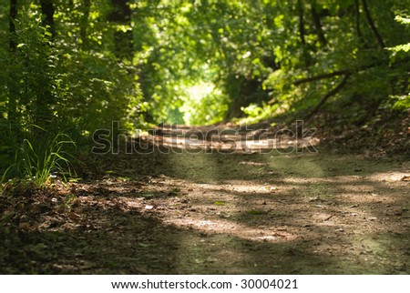Enlightening, path through a deep forest with a distant sunny patch of light, focus on the foreground - stock photo