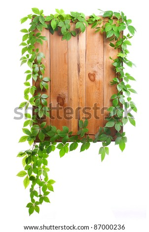 entwined with vine wood sign isolated on white background - stock photo