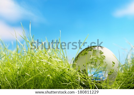 Environment concept, glass global in the grass - stock photo
