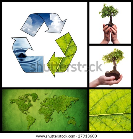 Environmental collage made from five images - stock photo