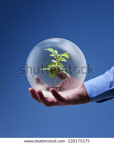 Environmental friendly business concept - businessman hand holding plant in glass sphere - stock photo