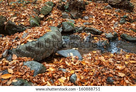 Environmental pollution. Old tire lies in a forest creek - stock photo