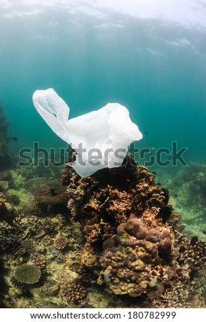 Environmental problem - a discarded plastic bag floats next to an area of dead coral on a damaged coral reef creating a hazard to turtes and other marine life - stock photo