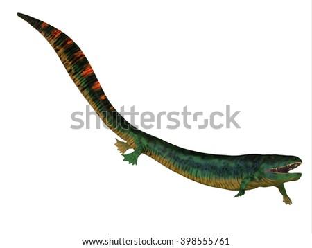 Eogyrinus Tetrapod Side Profile 3D illustration - Eogyrinus was a aquatic predatory tetrapod that lived in the Carboniferous Period of England. - stock photo
