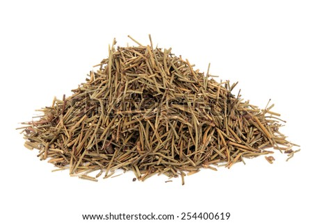 Ephedra herb used in chinese herbal medicine over white background.  Ma huang.