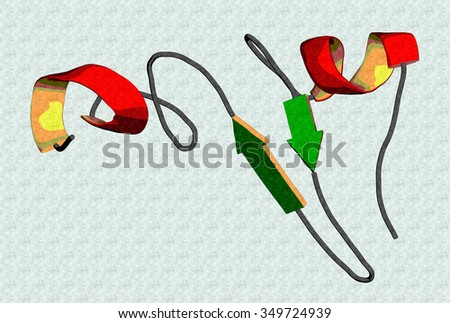 Epidermal growth factor (EGF) signaling protein molecule. Cartoon representation with secondary structure coloring (green sheets, red helices). - stock photo