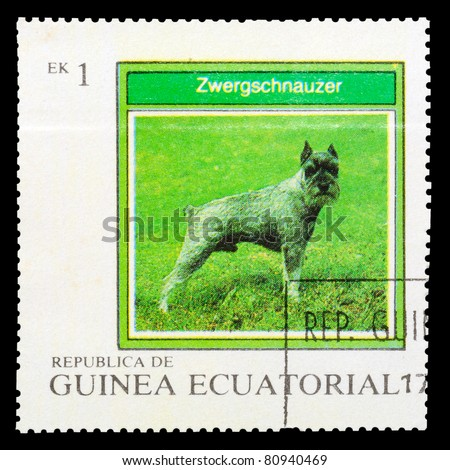 EQUATORIAL GUINEA - CIRCA 1977: A stamp printed by EQUATORIAL GUINEA shows a dog Zwergschnauzer, series, circa 1977 - stock photo