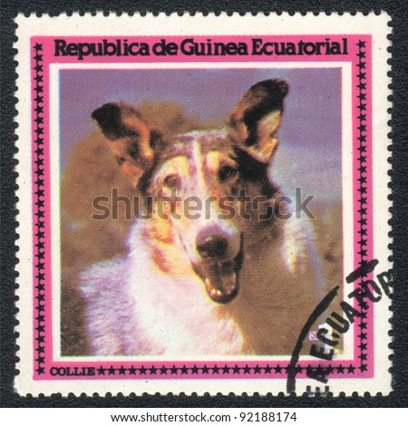 EQUATORIAL GUINEA - CIRCA 1978: A stamp printed in EQUATORIAL GUINEA shows  a Collie,  from series Breeds of dogs, circa 1978 - stock photo