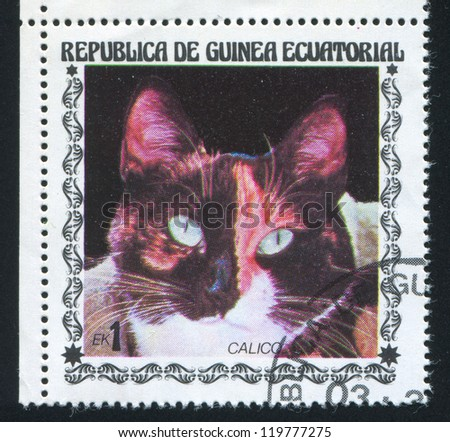 EQUATORIAL GUINEA - CIRCA 1972: stamp printed by Equatorial Guinea, shows Calico Cat, circa 1972 - stock photo