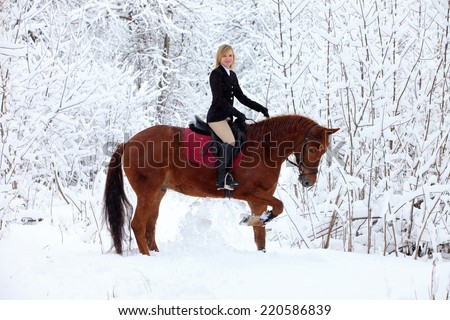 Equestrian girl ride on a horse in winter woods - stock photo