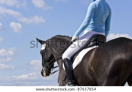 equestrian horse against a blue sky - stock photo