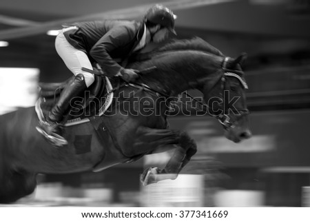 Equestrian Jumping - stock photo