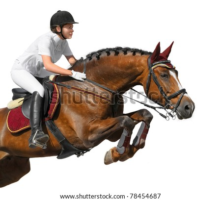 Equestrian: show jumping - isolated on white - stock photo