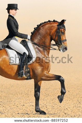 Equestrian sport - dressage (closeup of young woman and chestnut stallion) - stock photo