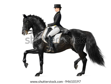 Equestrian sport - dressage (isolated on white) - stock photo