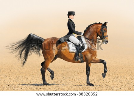 Equestrian sport - dressage (young woman and chestnut stallion) - stock photo