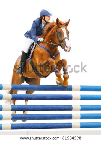 Equestrian sport - show jumping (young woman and sorrel stallion) on white background - stock photo