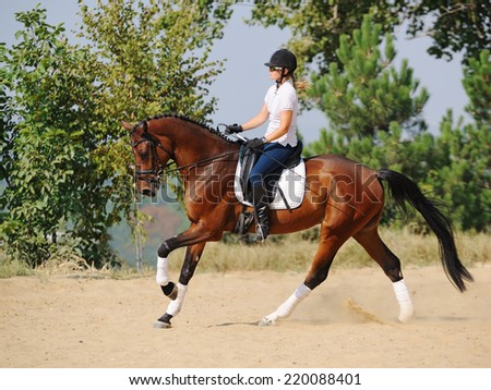 Equestrianism: rider on bay dressage horse, going gallop - stock photo