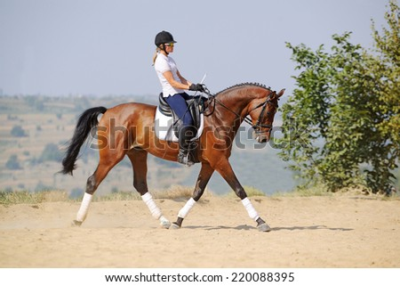 Equestrianism: rider on bay dressage horse, going trot - stock photo
