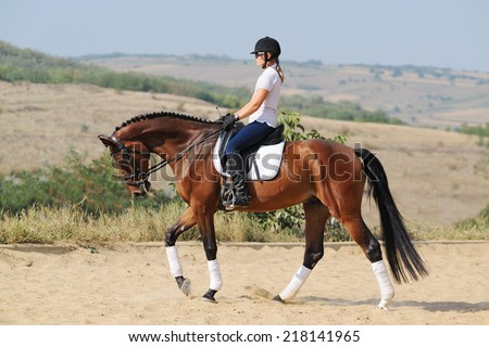 Equestrianism: rider on bay dressage horse, walk - stock photo