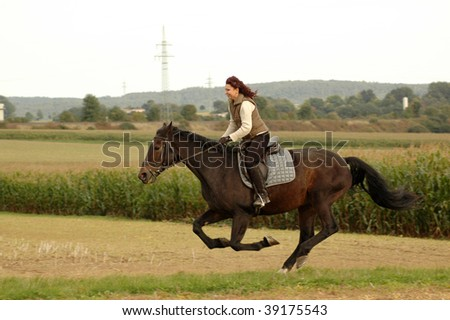 Equestrienne rides on a horse at a gallop. Hanoverian. - stock photo