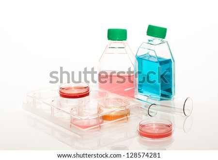 Equipment of scientific laboratory for experiments and research. Cell culture for biomedical diagnostic. Plastic Labware: confocal dishes, separation tubes and multiwell plates with a human blood. - stock photo