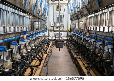 Equipment with milking machines on dairy farm - stock photo