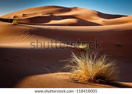 Erg chebbi sand dunes, Morocco, North Africa - stock photo