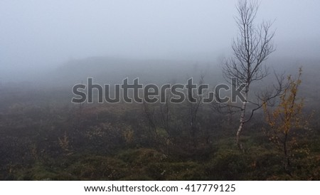 erie misty mountain landscape in late autumn