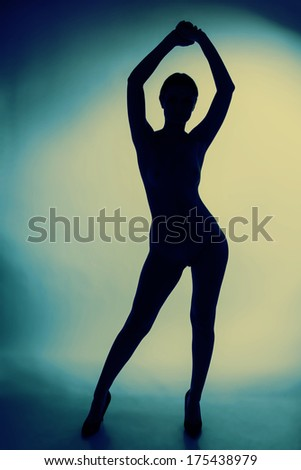 Erotic silhouette of nude and sexy woman - stock photo