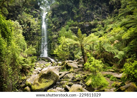Erskine Falls waterfall in the Otways National Park along the Great Ocean Road, Australia - stock photo