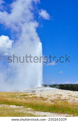 erupting Old Faithful Geyser in Upper Geyser basin of Yellowstone National Park, Wyoming