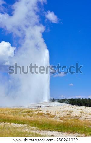 erupting Old Faithful Geyser in Upper Geyser basin of Yellowstone National Park, Wyoming - stock photo