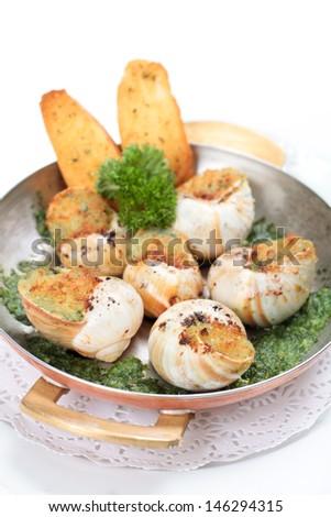 Escargot au gratin in steel serving pan - stock photo