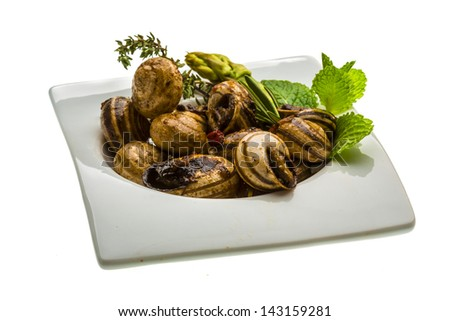 Escargot with asparagus, rosemary, thymus and tomato - stock photo