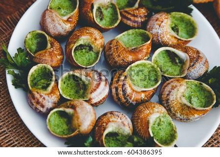 Escargot stock images royalty free images vectors - Clipart escargot ...