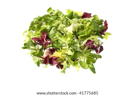 Escarole, radicchio and corn salad isolated against a white background.