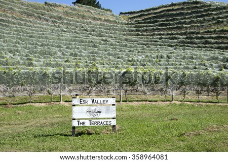 ESK VALLEY WINE ESTATE NAPIER NEW ZEALAND - CIRCA 2015 - The vines of the Esk Valley wine estate at Bay View in the Hawkes Bay region of  Napier on the North island New Zealand