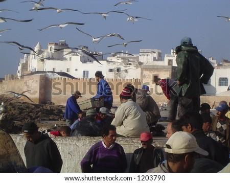 Essaouria Fishermen - stock photo