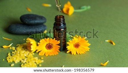 Essential aroma oil with calendula, salt and spa stones on green background. Selective focus. - stock photo